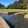 府中用水 その2 矢川、清水川