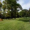 (未来予想)都心の公園で静かなキャンプ