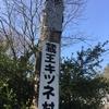 鈍行電車でゆくひたすら北を目指す旅②(仙台~盛岡)