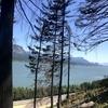 【オレゴン】ワシントンとの州境へ〜コロンビア・リバー・ゴージ