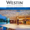 ウェスティンホテル大阪 は恋人と行くホテル(ポイントで豪華にお得に宿泊する方法)