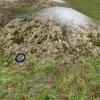 フィールドに投影するタイプのカーソル