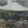 千鳥ヶ淵の桜2017(2017/4/7昼)