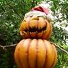 ハロウィンの仮装コスプレ!今年の人気トレンドを、楽天・アマゾン・セブンネットで調べてみた!
