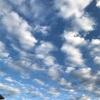 《写真記録・大阪・主に空》2019年9月23日〜29日