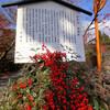 吉野太夫ゆかりの日蓮宗のお寺 常照寺