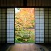 京都東山の東福寺・泉涌寺【紅葉】仏像や庭園を楽しむおすすめコース