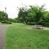 平日の公園散歩