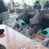 【聖地探し】双子ベビーカーで入れるおすすめレストラン - エアバギー  ココダブル フロムバース