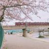 コロナに負けない散歩道は阪急電車と桜の最高のコラボレーション
