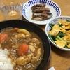 カレーライス ・ニラと卵炒め