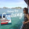 【世界遺産に泊まる!】ハロン湾クルーズ5つの魅力を徹底解説!@ベトナム