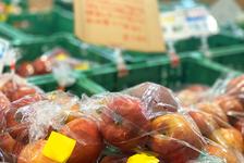 【新型コロナウイルス対策】食品の過剰在庫を乗り越えよう!飲食店・食品業者の救済措置・販売支援のまとめ