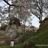 4月9日10日信州お花見 (4/10上田別所温泉)
