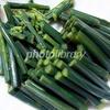 わらび 山菜