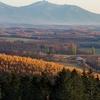 秋色パレット 晩秋の丘