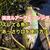 【反則技】スレたニジマスの釣り方・ルアーロッドで毛鉤!?『渓流釣り』