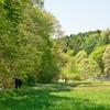 気持ちいい新緑の四季の杜公園…