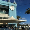世界三大魚市場の一つ・シドニーフィッシュマーケットへ 〜 シドニーなんちゃってダイヤモンド修行その6