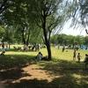 再び、舎人公園へ行ってきました。