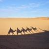 【モロッコ】砂漠を気軽に楽しめる?!サハラ砂漠の麓メルズーガでテント泊