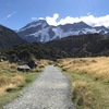 ニュージーランド旅行記 4日目 テカポ湖、マウントクック
