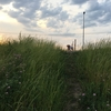 夕涼み散歩