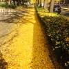 大阪の秋の風景