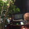 【なんと私語禁止!】読書好きのための 最高すぎるカフェ『アール座読書館』