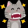 猫の歯磨きを楽しくカンタンに!猫の歯磨きグッズの紹介とおすすめ