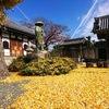 赤穂 宝専寺でのヨガ