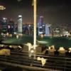 マリーナベイサンズに宿泊記 - シンガポールANA特典航空券旅行