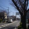 令和2年3月13日堺BURABURA 世界文化遺産が眺める事が出来る通り