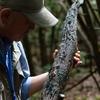 【富士樹海】ネイチャーガイド体験・西湖・いやしの里根場・練香づくり体験