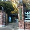 学食巡り 273食目 東京芸術大学 上野キャンパス