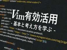 上達したいVim初心者のための設定・プラグインの見つけ方、学び方〈エディタ実践入門〉