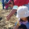 神戸市近郊の学生さん募集!!10月23日(日) 「親子農業体験」