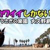 <動画UP>ウサギの楽園🐰 大久野島に行ってみた!