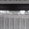 平成29年3月6日 鳥取大学 前期試験 合格発表 合格番号を全部掲載!!エル・オフィス