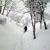 魚沼雪山さんぽ