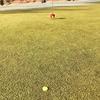 【ゴルフ小物にこだわる】グリーン上でスマートに立ち振る舞うためのマーカー活用法