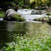 これからの季節におすすめ!大自然を気軽に味わう管理釣り場の紹介