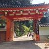 京都 三室戸寺に紫陽花を見に行ってきました