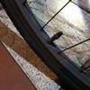 自転車の空気を入れてもその場から抜けていくのは虫ゴムの劣化
