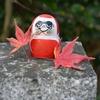 だるまパワーで運気を上げよう!関西の紅葉名所ハイキング!!