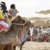 砂漠の娯楽-満天の星空を見に行くために内モンゴルへ(3)