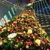 イスラム教徒もクリスマスを祝う?