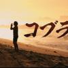 コブラ会シーズン2!!【軽いネタバレあり】