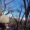 陣馬山(陣場山)~景信山~高尾山
