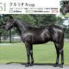 【キャロット夏祭り2021:厩舎評価】ウチのヤバイ出資馬はこの調教師のこの厩舎に入って欲しい!【関西入厩予定馬45頭】